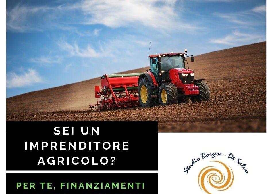 CONTRIBUTI TASSO AGEVOLATO E FONDO PERDUTO IN AGRICOLTURA